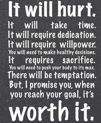 Fitness Motivation - It will hurt but it will be well worth it