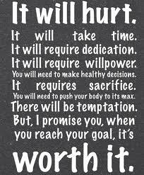 Fitness Motivation - It will hurt but it will be well worth it
