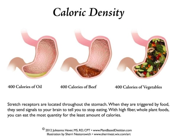 Fitness Weightloss Caloric Density-voxifit